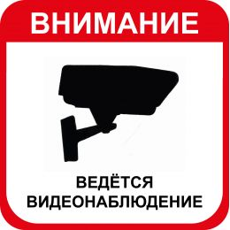 """Наклейка большая """"Ведется видеонаблюдение"""" №14 (20х20 см)"""