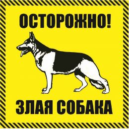 """Наклейка   """"Осторожно злая собака"""" №43 (10х10 см)"""