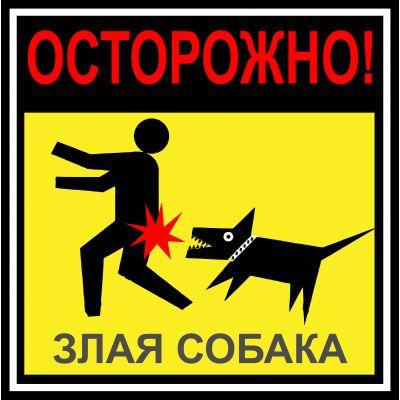 "Наклейка  ""Опасно злая собака "" №44 (10х10 см)"