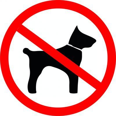 """Наклейка маленькая  """"С собаками вход запрещен"""" №28 (10х10 см)"""