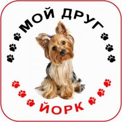 Наклейка круглая с собакой 03 - Йорк