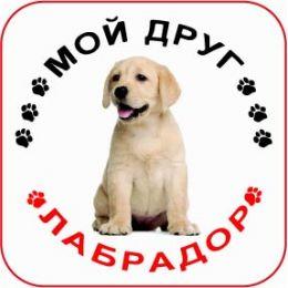 Наклейка круглая с собакой 05