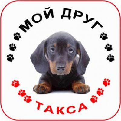 Наклейка круглая с собакой 07 - Такса