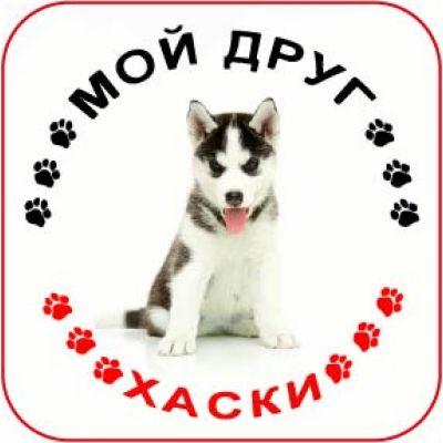 Наклейка круглая с собакой 08 - Хаски