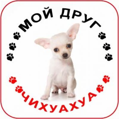 Наклейка круглая с собакой 09 - Чихуахуа
