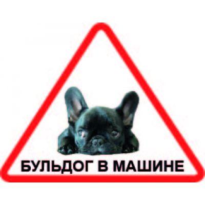 Наклейка треугольная  с собакой 01 - Бульдог