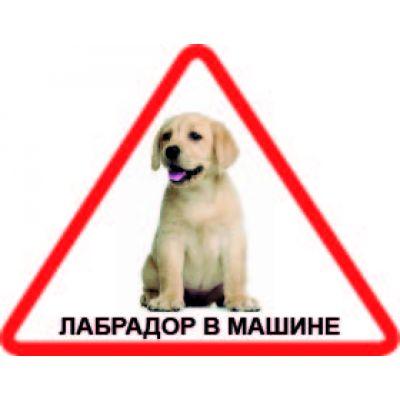 Наклейка треугольная с собакой 05 - Лабрадор