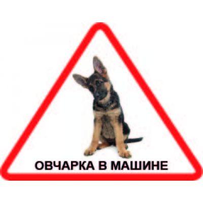 Наклейка треугольная  с собакой 06 - Овчарка