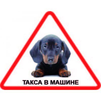 Наклейка треугольная с собакой 07 - Такса