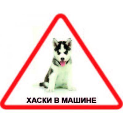Наклейка треугольная с собакой 08 - Хаски