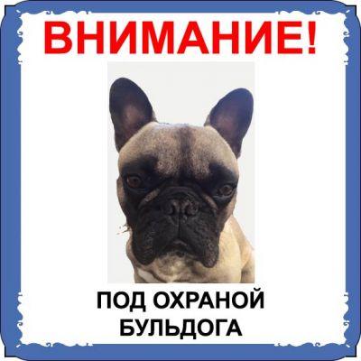 Табличка на  металле с собакой 01 - Бульдог