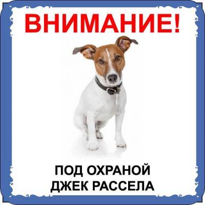 Табличка на  металле с собакой 02 - Джек рассел