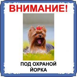 Табличка на  металле с собакой 03