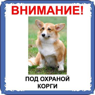 Табличка на  металле с собакой 04 - Корги
