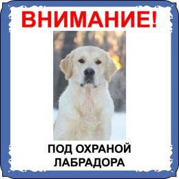Табличка на  металле с собакой 05