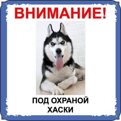 Табличка на  металле с собакой  08 - Хаски