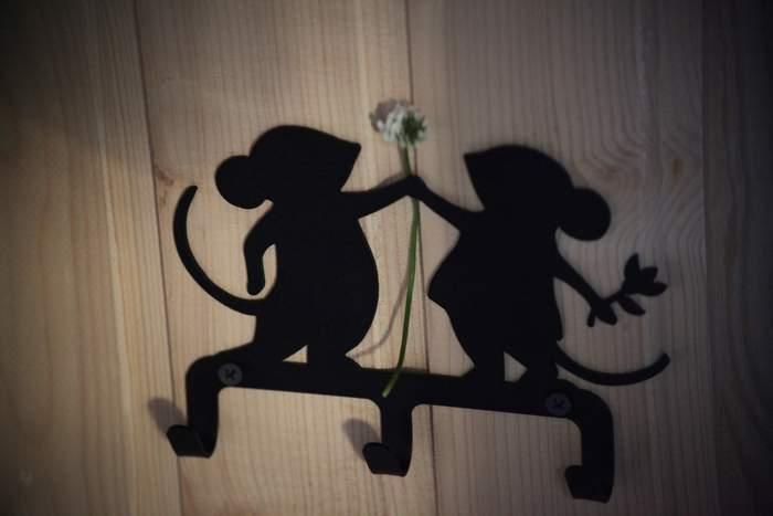 крючки мышки