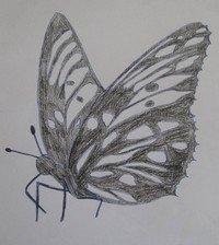 чертеж флюгера бабочки своими руками